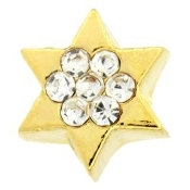 Star Crystal & Gold Charm For Lockets