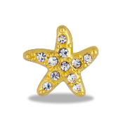 Gold Starfish Crystal Large Charm for Keepsake Lockets