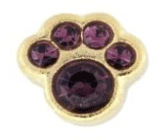 2- February Paw (Deep Amethyst) Charm For Lockets