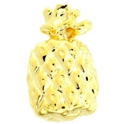 Pineapple Charm For Lockets - TRUNK SALE NO OTHER DISCOUNT