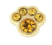 11- November Paw (Yellow Crystal) Charm For Lockets