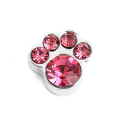 10- October Paw (Pink Crystal) Charm For Lockets
